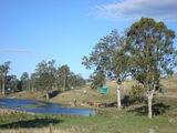 Picture relating to Kilcoy - titled 'Kilcoy rural scene '