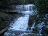 Picture relating to Mount Field National Park - titled 'Mount Field National Park stepped falls'