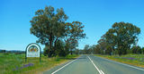 Picture of / about 'Boree Cabonne' New South Wales - Cabonne Country - Australia's Food Basket