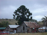 Picture of / about 'Maidenwell' Queensland - Maidenwell