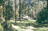 Picture relating to Lake Elizabeth - titled 'Lake Elizabeth camp ground, Otway State Forest'