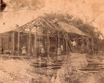 Picture relating to Mackay - titled 'Rebuilding the fernery at The Hollow, Mackay, ca. 1877'