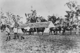 Picture relating to Condamine - titled 'Stable at Condamine Plains Station, ca. 1875'