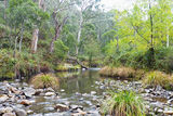 Picture relating to Emu Flat Creek - titled 'Emu Flat Creek'