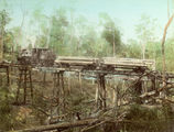 Picture relating to Canungra - titled 'Number One tram bridge at Canungra'