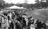 Picture relating to Stanthorpe - titled 'Crowds at the Stanthorpe showgrounds, ca. 1915'