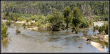 Picture relating to Cotter River - titled 'Cotter River'