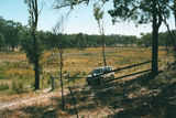 Picture of / about 'Major Mitchell Springs' Queensland - Major Mitchell Springs
