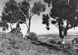 Picture relating to Parliament House - titled 'View from Mt Ainslie over Reid to St John Church and Old Parliament House'