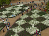 Picture relating to Parkes - titled 'Floriade 2009'
