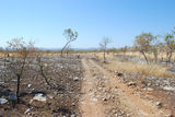 Picture relating to Gregory National Park - titled 'Gregory National Park'