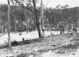 Picture relating to Black Mountain - titled 'Excavations for a water reservoir on Black Mountain'
