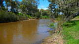 Picture relating to Cowra - titled 'Lachlan River at Cowra'
