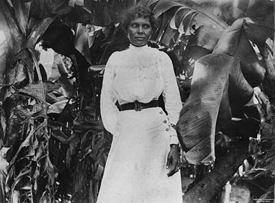 Picture of / about 'Farnborough' Queensland - South Sea Islander woman at Farnborough, Queensland, ca. 1895