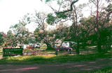 Picture relating to Aire River - titled 'Aire River East Bank Camp Ground, Otway National Park'