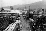 Picture relating to Canungra - titled 'Sandply Timber Company's yards in Canungra, Queensland, ca. 1936'