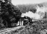 Picture relating to Canungra - titled 'Climax locomotive stopping for water, Canungra, ca.1913'
