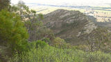 Picture relating to The Rock Nature Reserve - titled 'The Rock Nature Reserve'