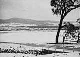 Picture of / about 'Reid' the Australian Capital Territory - Record fall of snow - Reid from near AWM site