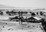 Picture relating to Black Mountain - titled 'Construction site for CSIR Insectarium, Clunies Ross Street, Black Mountain. Civic buildings at the rear.'