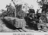 Picture relating to Nambour - titled 'Sugar cane trains, Nambour, ca. 1910'