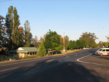 Picture of / about 'Dunedoo' New South Wales - Dunedoo main street