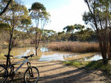 Picture relating to Narrogin - titled 'Narrogin bike trail'