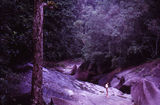 Picture relating to Babinda - titled 'Babinda - N.Q.  1966'