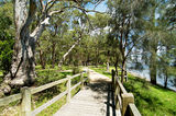 Murrays Beach Footbridge, Lake Macquarie