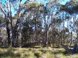 Picture of / about 'Mount Holland' New South Wales - Mount Holland