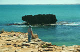 Picture relating to Cape Dombey - titled 'Cape Dombey'
