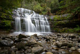 Picture relating to Liffey Falls - titled 'Liffey Falls'