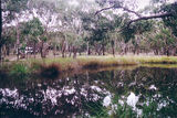 Picture relating to Brisbane Ranges National Park - titled 'Brisbane Ranges National Park: Boar Gully Camp Ground'