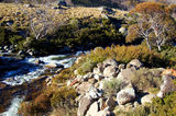 Picture relating to Thredbo River - titled 'Thredbo River'