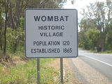 Picture of / about 'Wombat' New South Wales - Wombat