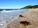 Picture of / about 'Sisters Beach' Tasmania - Sisters Beach