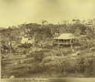 Picture relating to Cooktown - titled 'Mounted Police station in Cooktown'