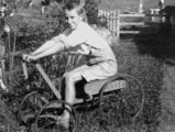 Picture relating to Eumundi - titled 'One of the Etheridge boys from Eumundi, Queensland, on a billy cart, 1910-1920'