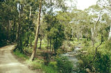 Picture of / about 'Toombullup' Victoria - Toombullup State Forest: Jones Camp Ground