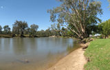 Picture relating to Murray River - titled 'Murray River at Albury'
