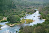 Picture relating to Snowy River National Park - titled 'Snowy River National Park'