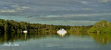 Picture relating to Lake Macquarie - titled 'Kilabin Bay headwaters, Rathmines, Lake Macquarie'