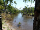 Picture relating to Campaspe River - titled 'The Campaspe at Echuca'