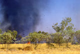 Picture relating to Chichester Range - titled 'Fire on Christmas Creek Station'