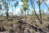 Picture relating to Mount Bundy Station - titled 'Mount Bundy Station'