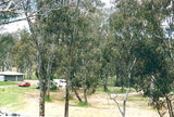 Harrow camp ground, John Mullogh Park