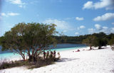 Picture relating to Lake McKenzie (Boorangoora) - titled 'Lake McKenzie (Boorangoora)'