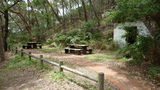 Picture relating to Tomaree Head - titled 'Picnic tables about a third of the way up Tomaree Head'