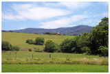 Picture relating to Jamberoo - titled 'Rural Jamberoo - New South Wales'