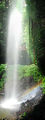 Picture relating to Dorrigo National Park - titled 'Crystal Shower Falls'